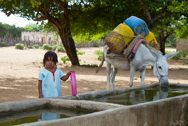 Water for People and Animals; La Guajira, Colombia