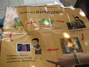 Hygiene education materials in Lao PDR which depict common transmission pathways of intestinal worms. Credit: Kim Koporc