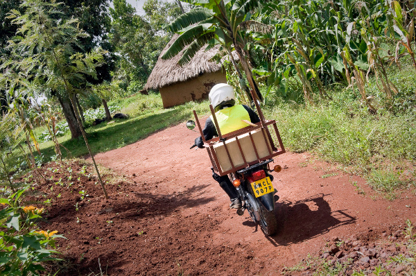 Circuit riders deliver the quarterly chlorine supply to the local health promoters who are maintaining Dispensers for Safe Water. Credit: Evidence Action
