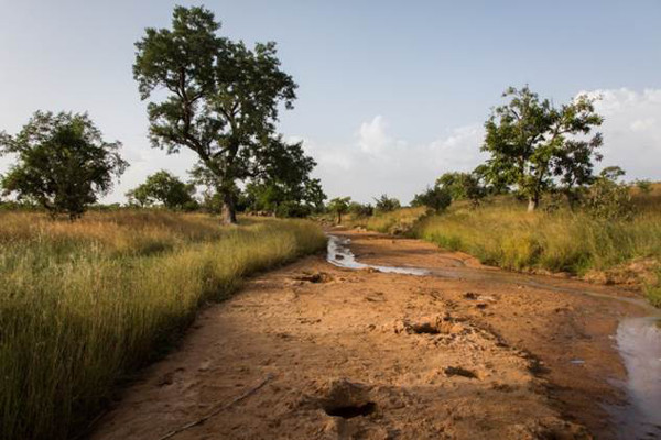 A dried-up riverbed in Imbina, Burkina Faso. There are several holes where people have tried to dig for water. Photo credit: WaterAid/ Andrew McConnell - Imbina, Burkina Faso